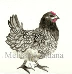 Myrtle: Blue Bell Chicken original watercolor