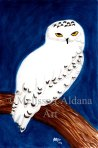 Original Watercolor Painting Snowy Owl